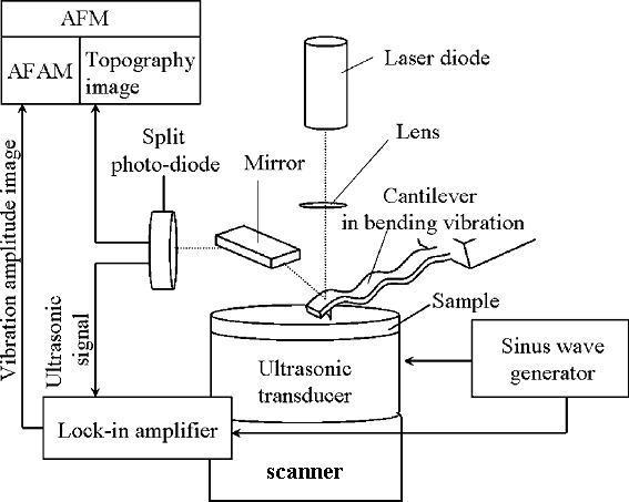 Proposal 2010   Internal   Nonlinear response to probe vitrification